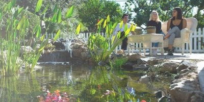 Orange County Clean Pond Water