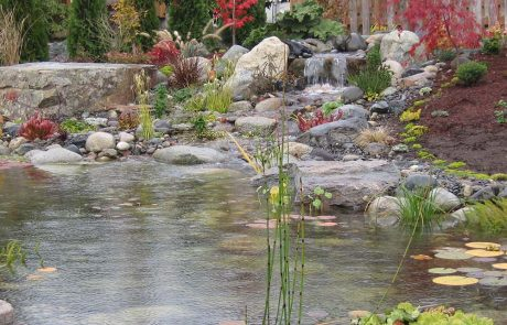 AquaLife Ponds Built Water Feature