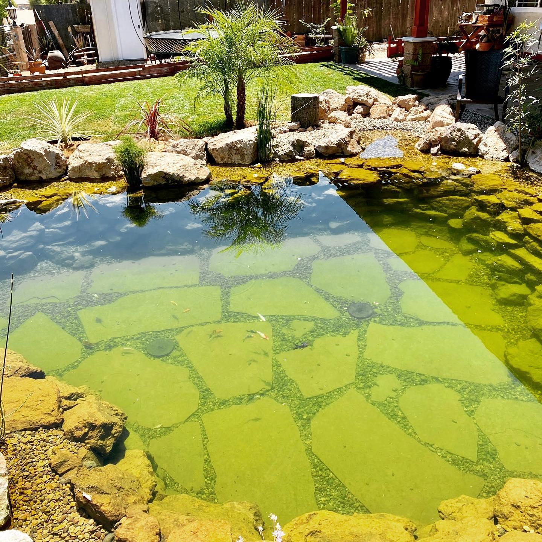 Orange County Pond Myth